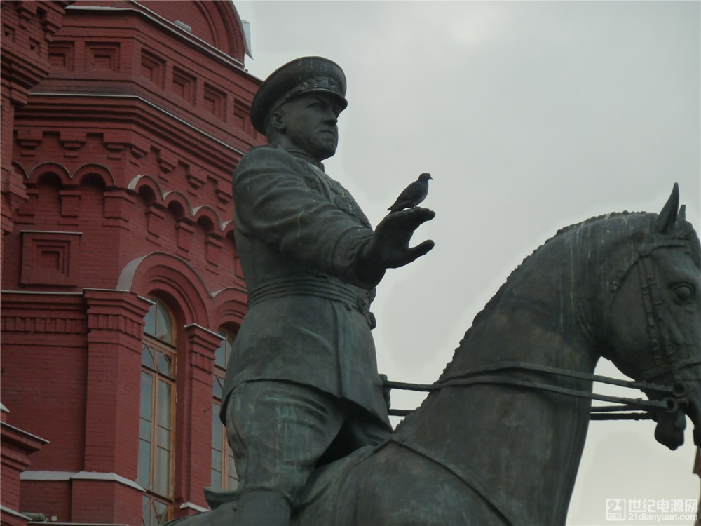 一只信鸽停在朱可夫塑像手上.jpg